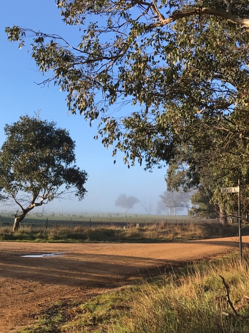 Where two laneways meet at the school bus stop –Laverstock NSW