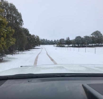 Tree-lined, paddock laneway in heavy snow August 2019